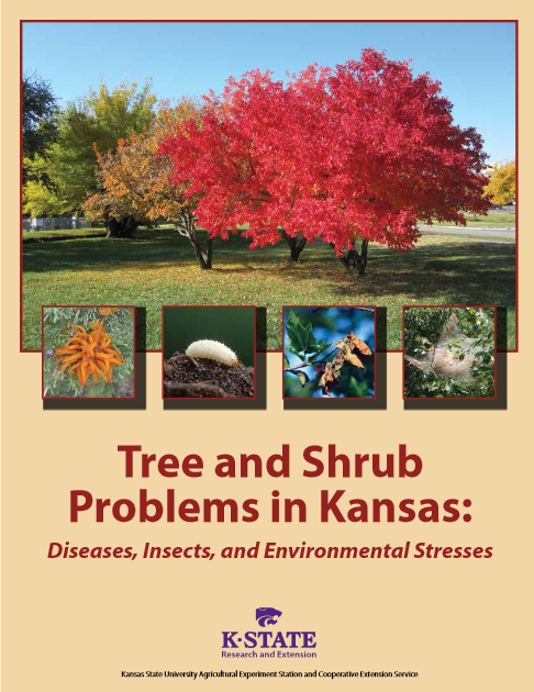 Trees and Shrubs Publication